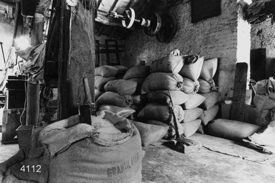 mulino-farina